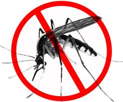 Limpopo moves to curb malaria