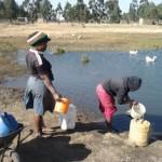 Two young mothers fetching water from a dam which they share with animals