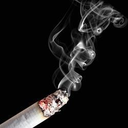 Smoking policies save lives