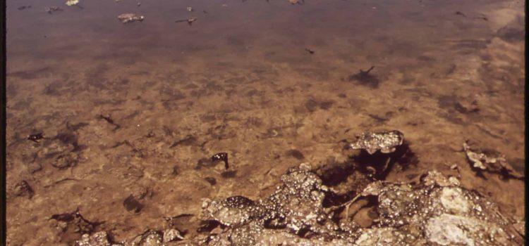 Letter-writing campaign kicks off to close sewage dam
