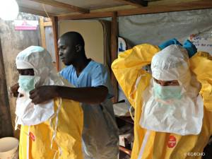 The WHO has been widely criticised for its late response to West Africa's on-going Ebola outbreak