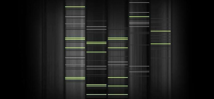 Your genes could predict your future, but would you want them to?