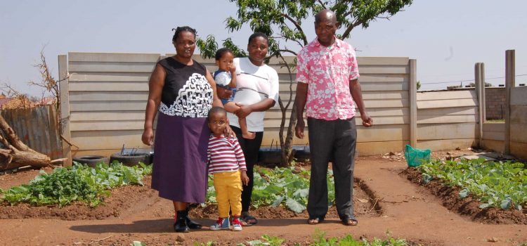 A backyard food garden sustains a North West family