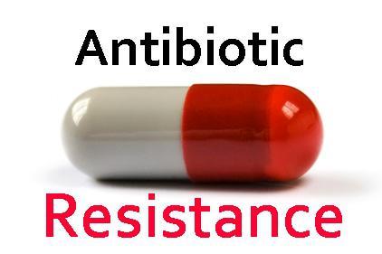 Set limit on antibiotic use, say experts