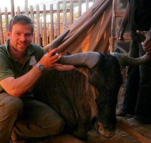 onathan Cranston poses with a wildebeest for a photo taken in a South African game reserve earlier this year. In 2013 he contracted zoonotic TB likely from wildebeest he was working with that year. (Credit: Supplied by Jonathan Cranston)