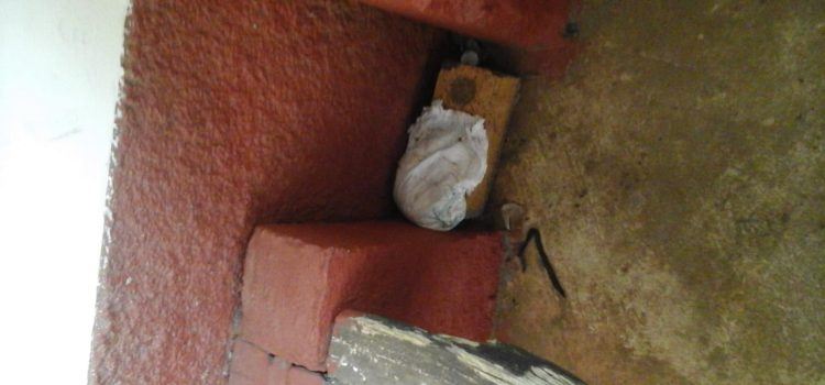 Filth & neglect at 'once respected hospital'