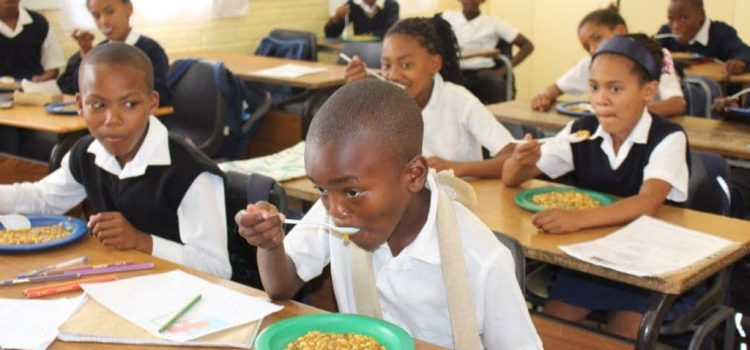 School nutrition programme improves children's concentration
