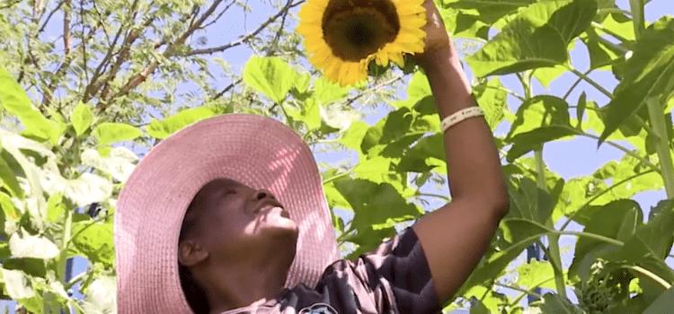 Feeding the inner city through Fifi's Farmacy