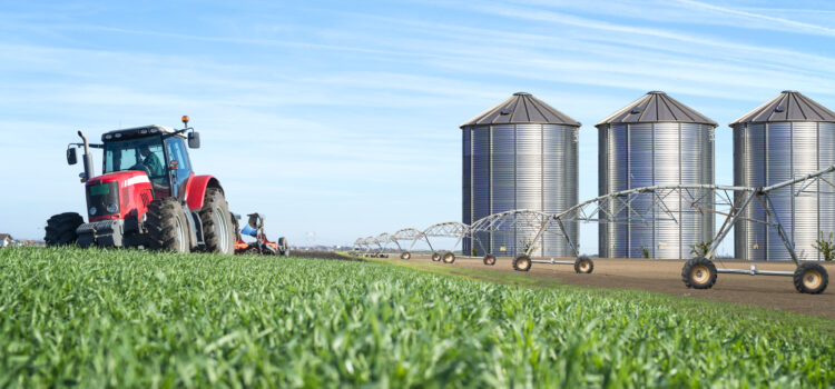 Municipalities urged to play bigger role in food security