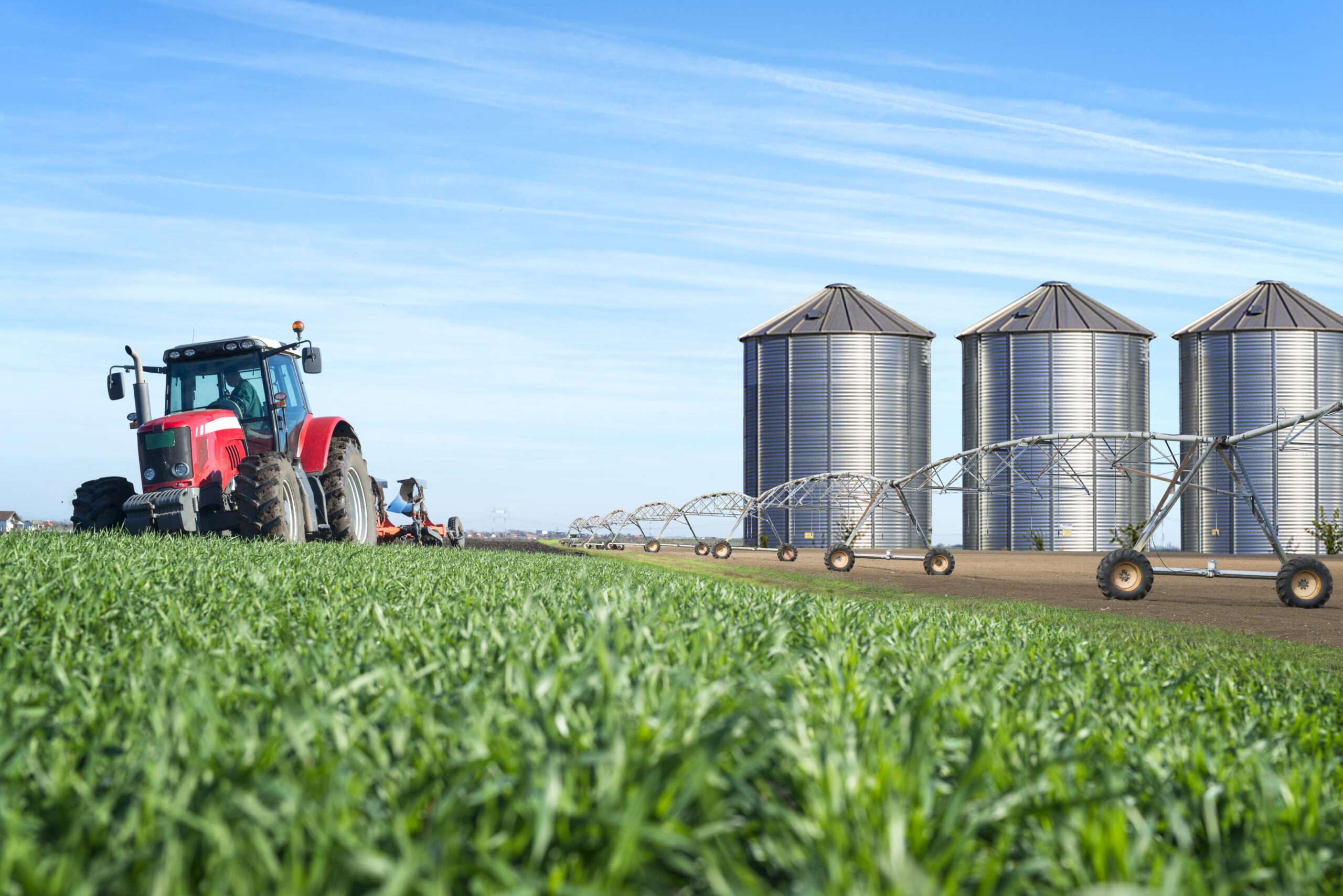 An expert has urged local municipalities to play a bigger role in food security.