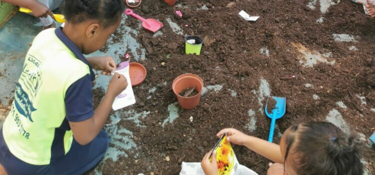 Healthy eating: ECD kids ditch sweets for homegrown greens